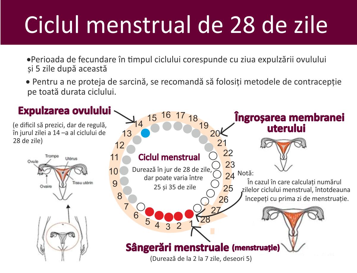 îți poate suferi tot corpul înainte de menstruație